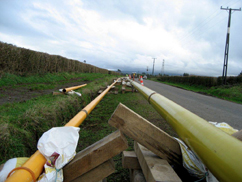 TAG Oil pipeline in progress